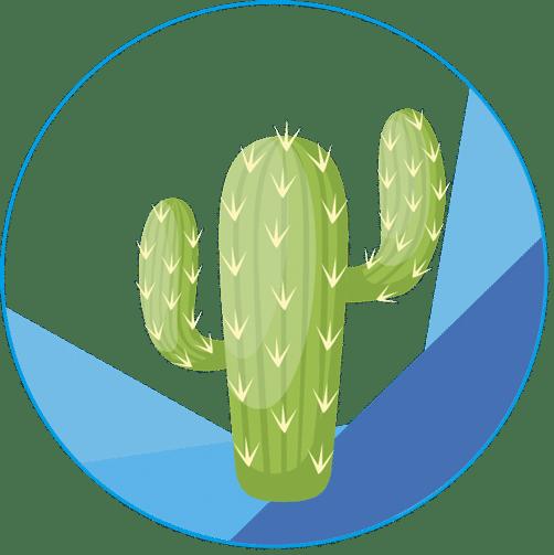 favicon cactus 502x503